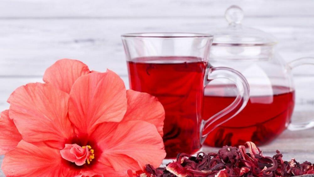bienfaits de l'hibiscus