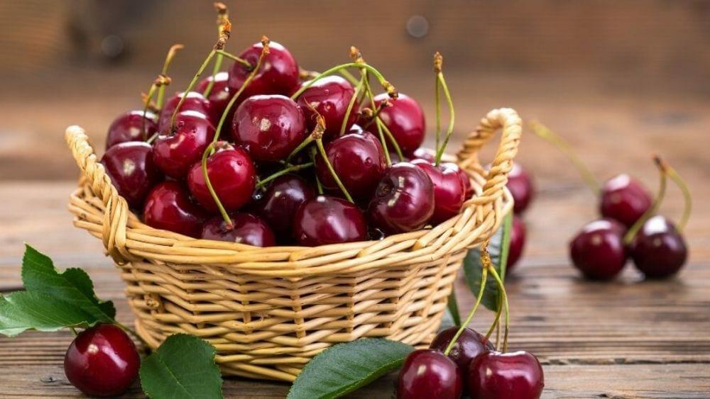 cerise fruits du printemps, liste des fruits rouges