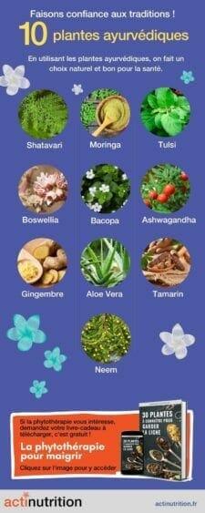 bienfait plantes ayurvediques