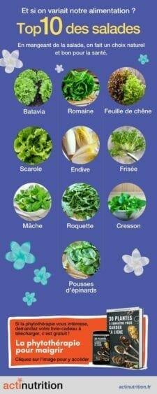 variétés de salades infographie